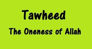 Understanding Tawheed & The Position of the Messenger of Allaah (Sallalahu Alayhee Wasallam) – Allaamah Ehsaan Elaahee Zaheer