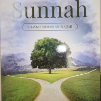 whats takes a person out of the Sunnah web